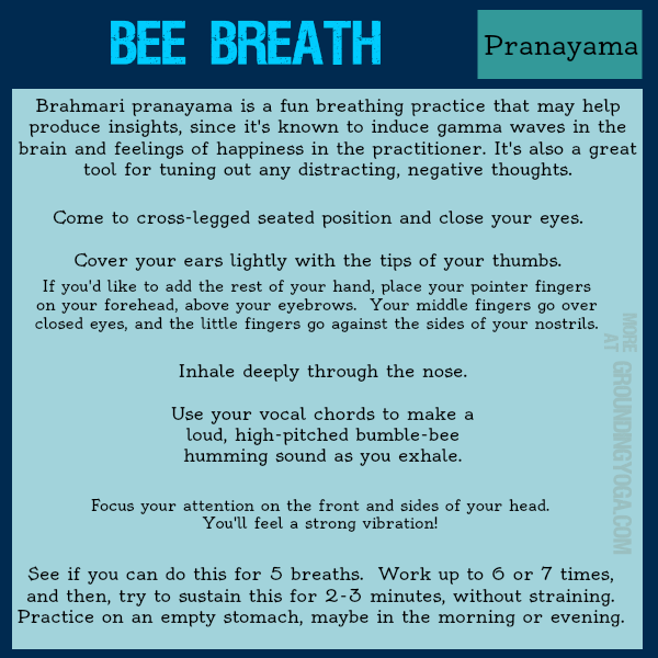 5M - Bee breath